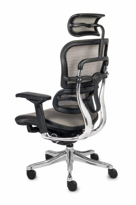 Ergonomic Mesh Office Chair Ergohuman, Ergonomic Office Chair